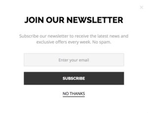 example of generic newsletter sign-up form